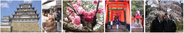 "Japan 2006 ""Sakura no Hanami"", 桜の花 見 'cherry blossoms"