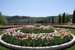 Ferrari Carano Vineyard and Winery garden - Healdsburg - Dry Creek Valley