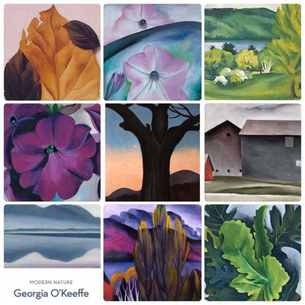 Modern Nature: Georgia O'Keeffe and Lake George - de Young Fine Arts Museum