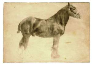 "Edgar Degas study for ""Plough Horse"""